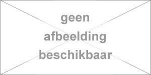 Bauknecht / Whirlpool verwarmingselement 2050W met NTC witgoedpartnr:  481225928669